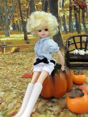 Dollshow29_licca_02