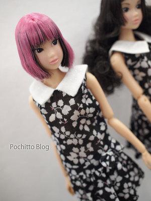 0501_petworks_momoko_06