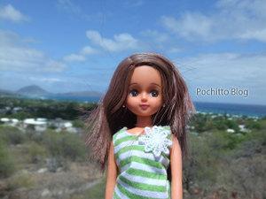 Licca_hawaii_47