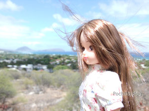 Licca_hawaii_48
